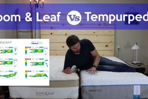 Tempurpedic Vs. Loom And Leaf Review